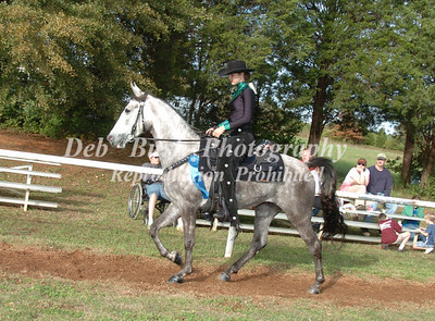CLASS 19 TRAIL PLEASURE SPECIALTY  AM