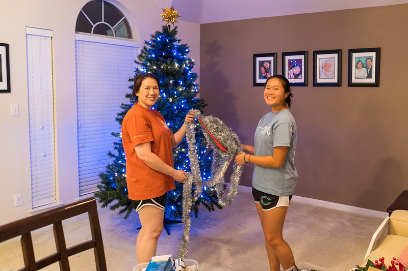 20191124_decorating-christmas-tree_002.jpg