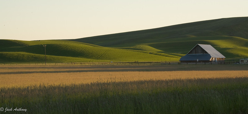 barn and field_2163.jpg