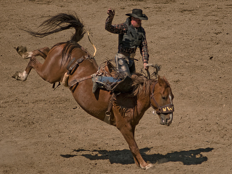 COOMBS RODEO-2009-3683A.jpg