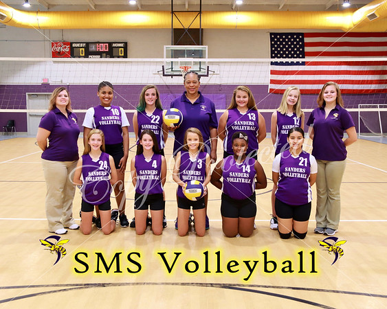 SMS Volleyball 2017