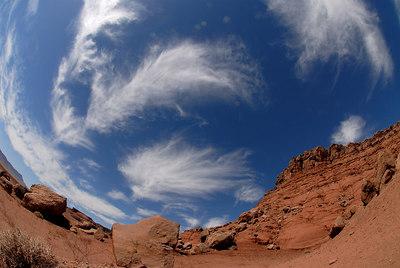 Navajo Reservation  AZ
