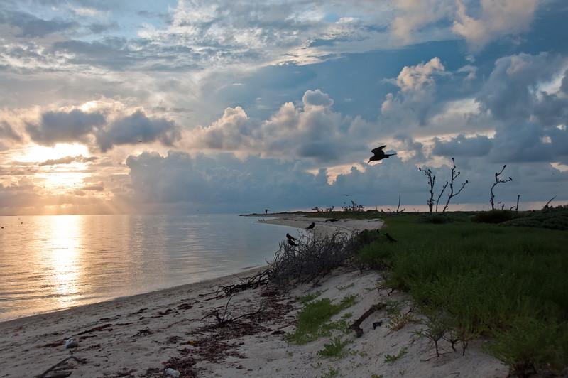 Sunrise on Bush Key