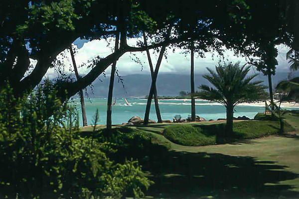 Windsurfing Maui 1986