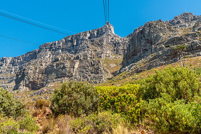 Table Mountain_2619