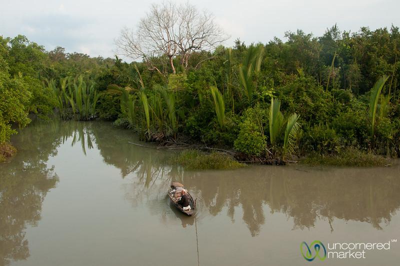 Fishing Alone on River - Sundarbans, Bangladesh
