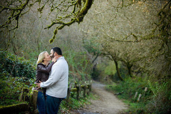 Stevie and Angelo (Engagement Photography) @ Henry Cowell, Felton