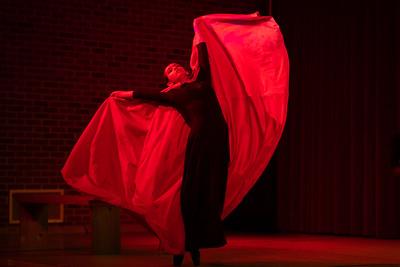 Dracula Dance Performance