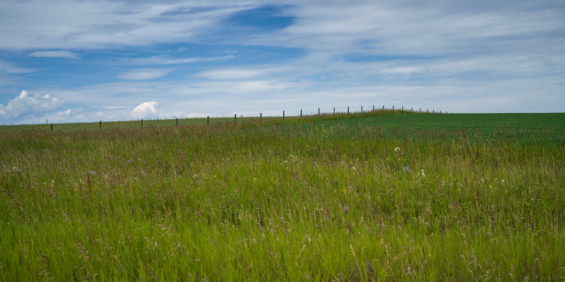 Landscape, Longview, Cowboy Trail, Southern Alberta, Alberta, Canada