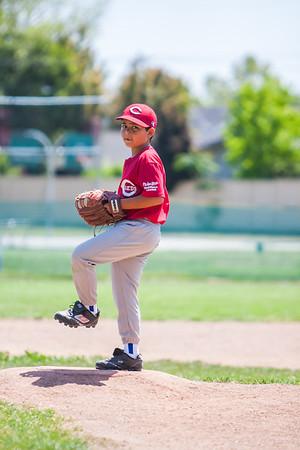 2014 Baseball