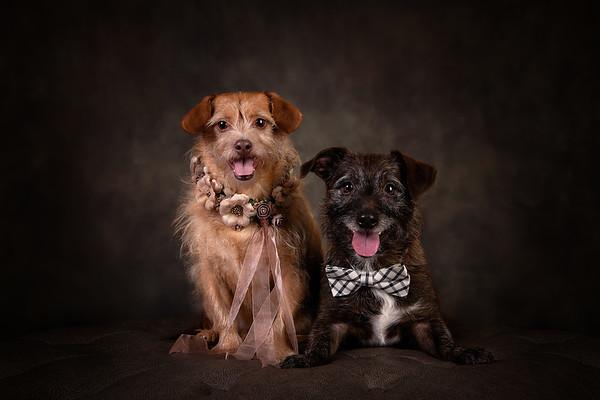 Boone and Sasha