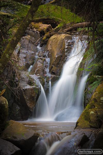 creek151010-220.jpg