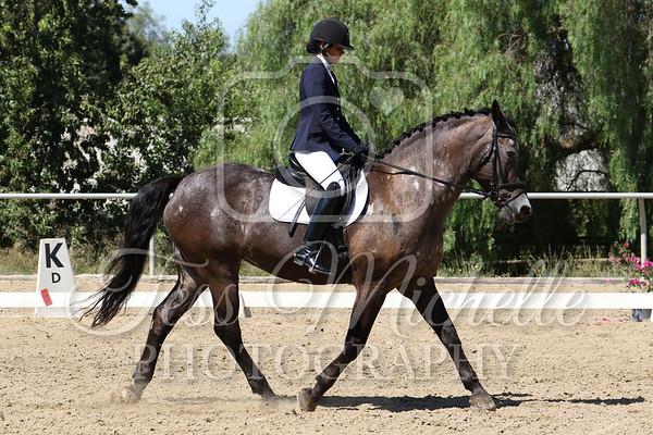 Spirit Equestrian August 2019