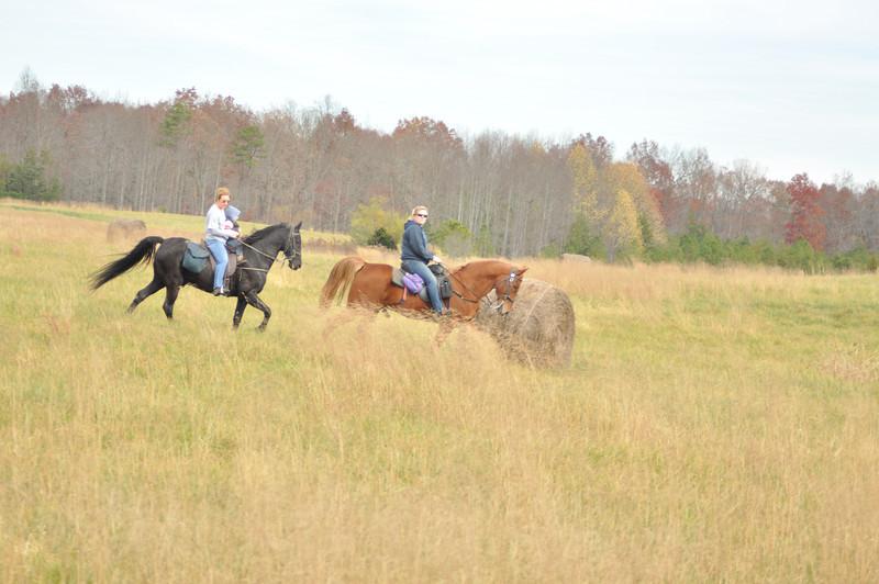horse-riding-0133.jpg