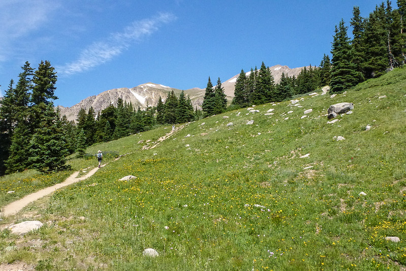 More Herman Gulch trail