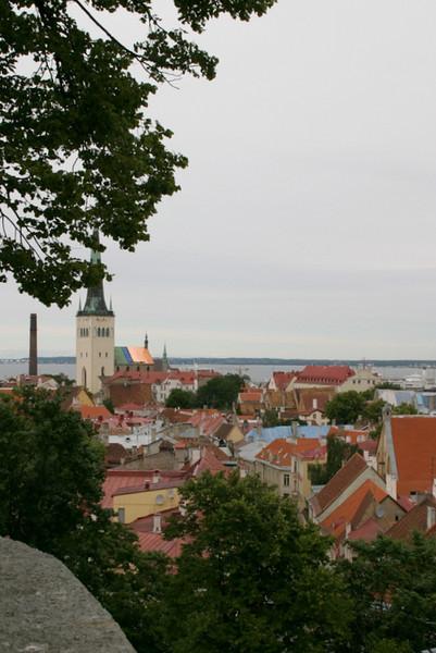 The Baltic's Amber Coast, July 5-16, 2008