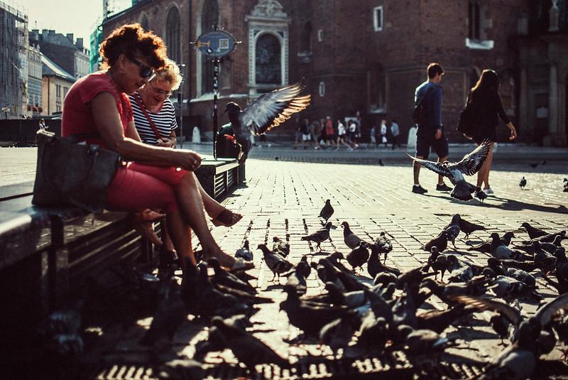adies feeding pigeons krakow.jpg