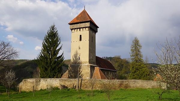 2019 Saxon Transylvania