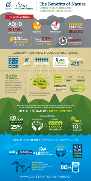 CO_Step_Infographic_Sheet