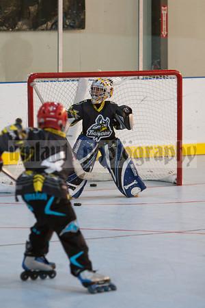 NorCal Cup 2011Hockey Sunday