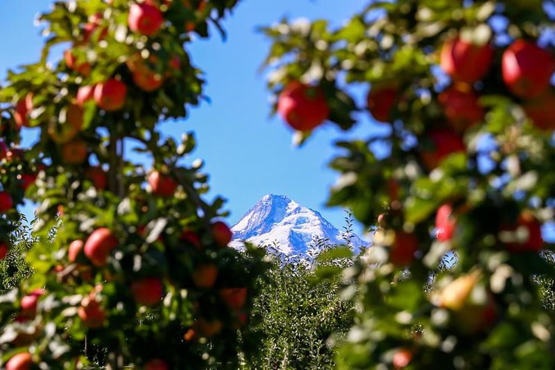 Suzi Pratt_Seattle Travel Photographer-31.jpg