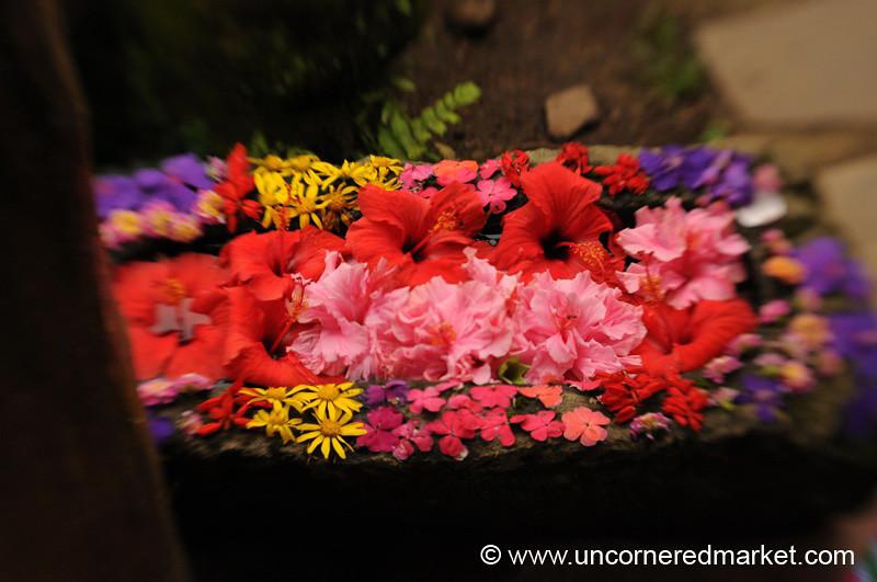 Floral Arrangement - Ruta de las Flores, El Salvador