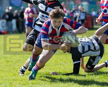 Dunvant Junior Rugby Festival 2019