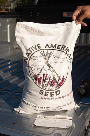 Seed Stomp (1 Apr 2021)