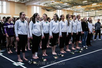 Madison Memorial Gymnastics - Feb 01, 2014
