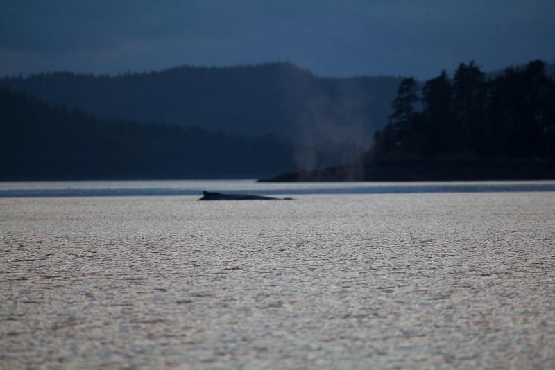 Alaska-156.jpg