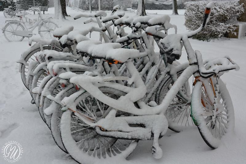 20171210 Winter in Zoetermeer GVW_9068.jpg