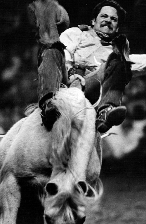 . Marv Hurley of Solvang, Calif., pits his skill against Valentine in the bareback bronc riding in the matinee competition in the National Western Stock Show Rodeo in Denver. 1982. Bill Wunsch, The Denver Post