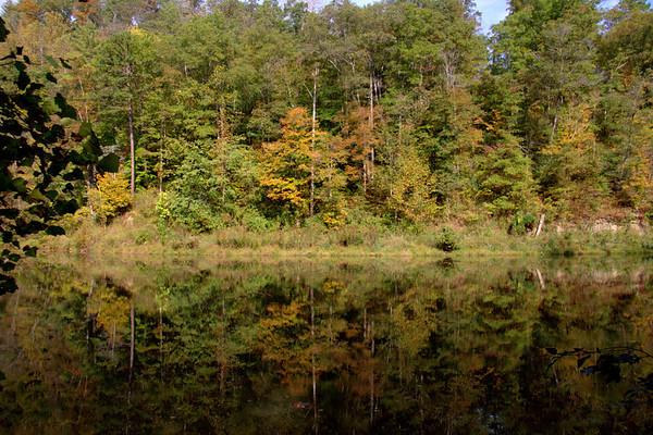 Autumn In Natural Bridge Kentucky