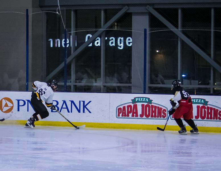 Bruins-40.jpg