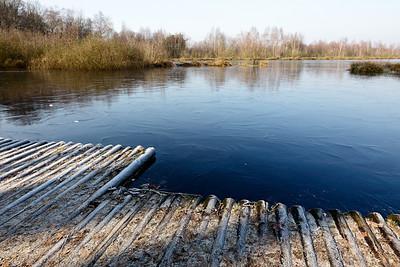 2011-01-29 Groote Peel