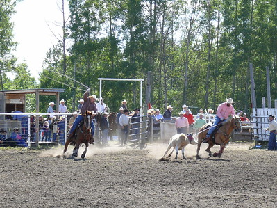Team Roping Section 3