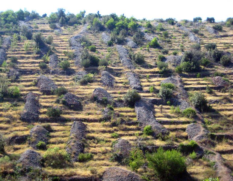 2011 0910 stonepiles via comunalis.jpg