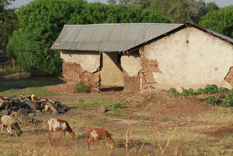 Kenya Part1 '15 2448.JPG
