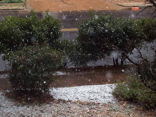 Snow Pics 2.23.2010