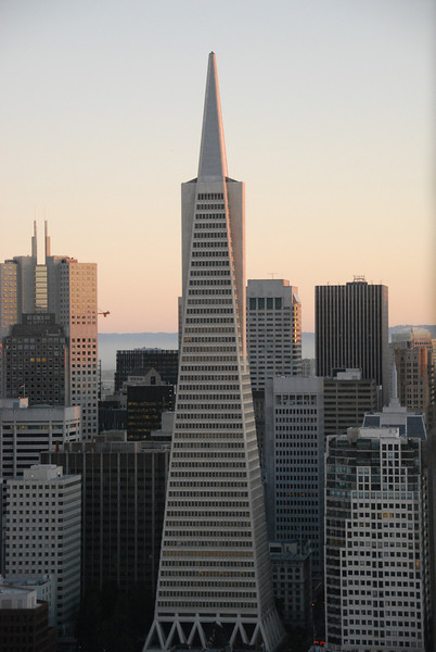 Transamerica Pyramid - As seen from atop Coit Tower  © 2007 Brian Neal