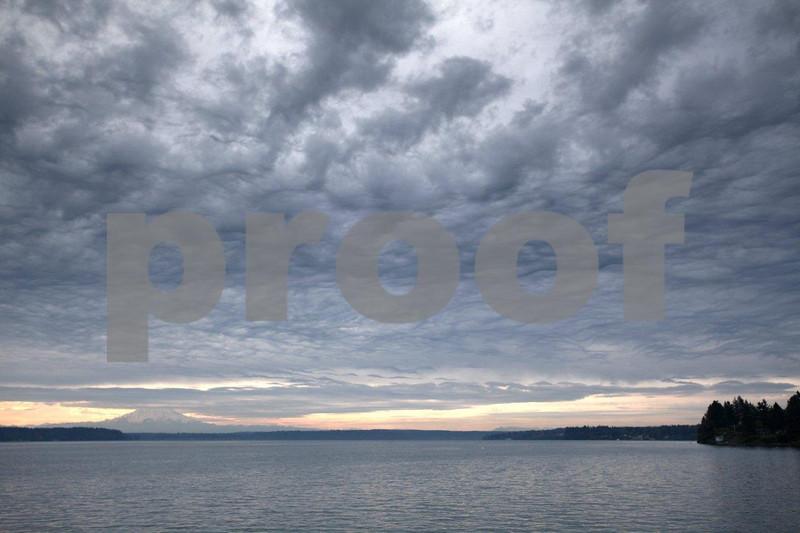 Puget Marina 3591ps.jpg
