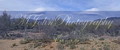 Tucson 2018