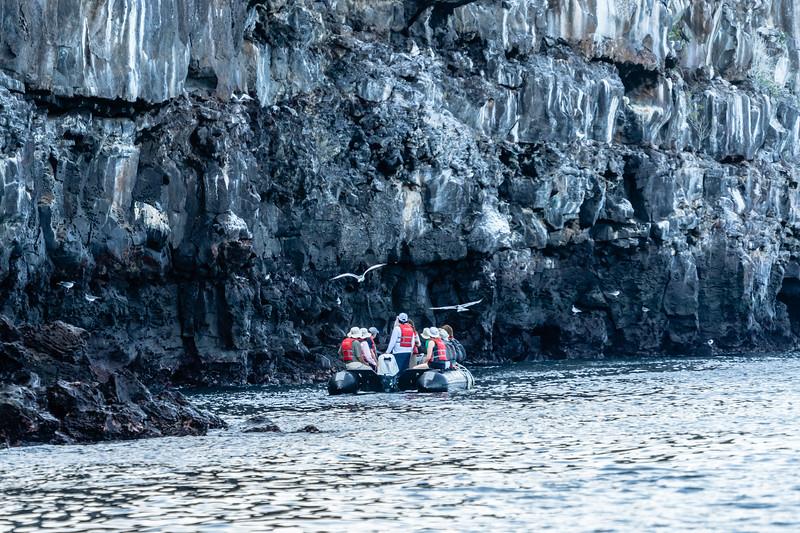 Galapagos-3842.jpg