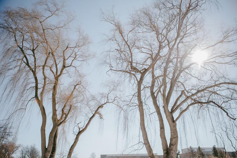AVS_EcoPreserve_Winter2021-33.jpg
