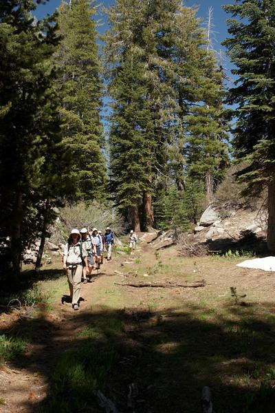 2010-07-04-Emigrant-Wilderness121.jpg