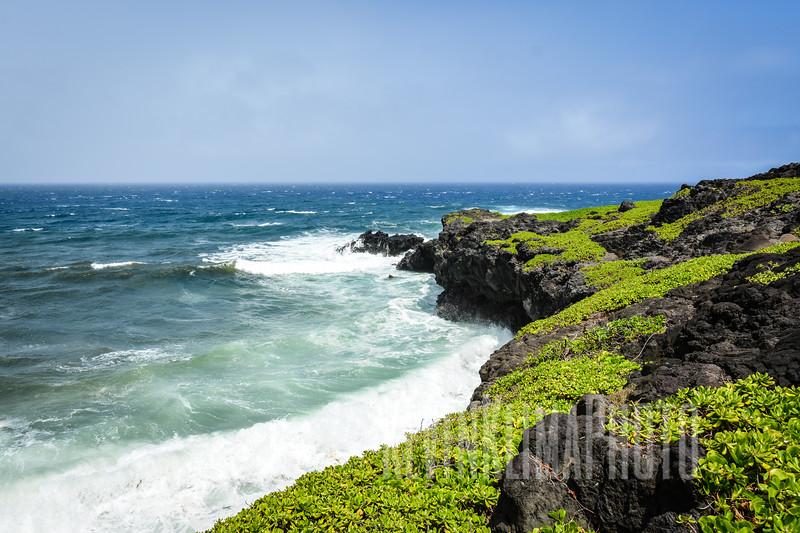 Maui156.jpg