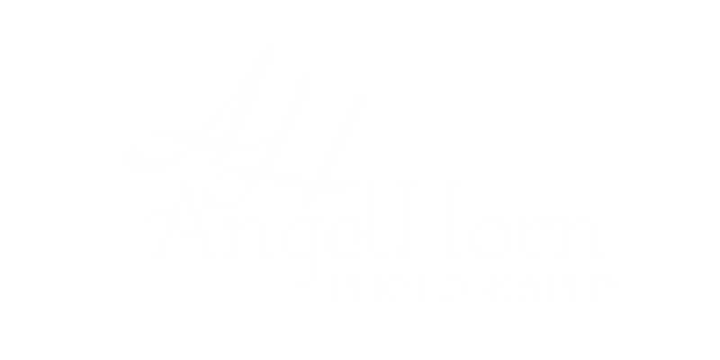 faded logo for web.png