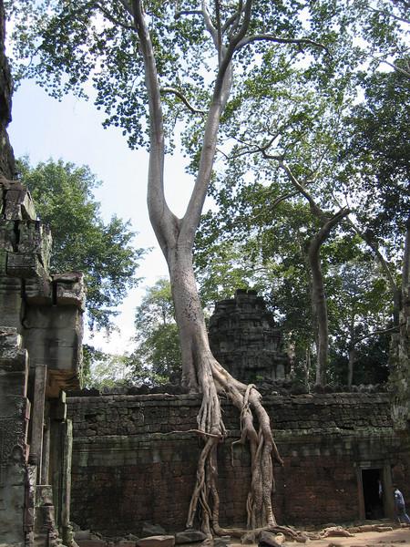 Burma 2003-43.jpg
