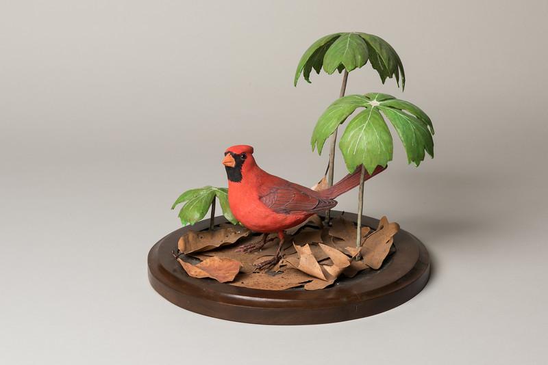 Still Life Dan Holman Birds (10 of 50).jpg