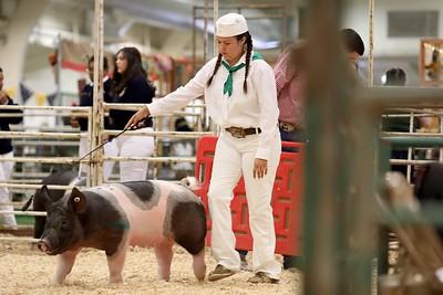 Photos: 75th annual Santa Clara County Fair